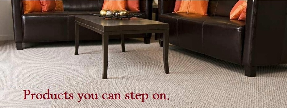 Home Carpetbarntampa Com